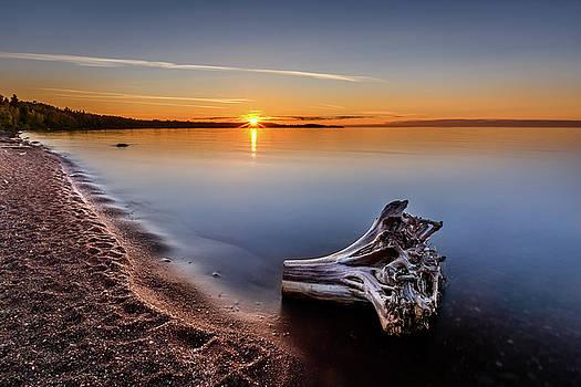 Beached by Gary Harris