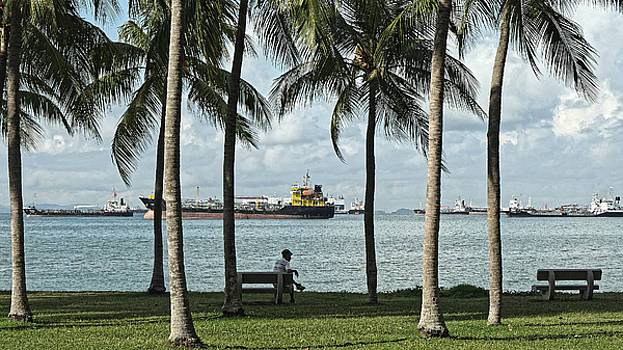 Beachfront park with freighters, Singapore 2014 by Chris Honeyman