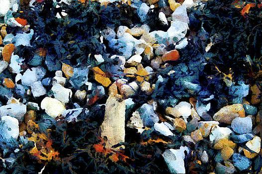 Beachscape by Gavin Bates