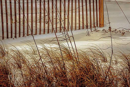 Beachside Beauty by Barry Jones