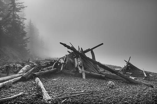 Beacons on the shore by Darryl Luscombe