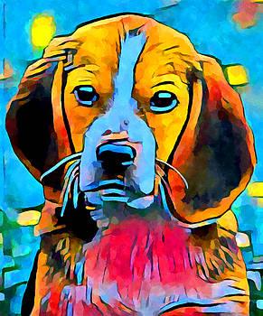 Beagle by Chris Butler