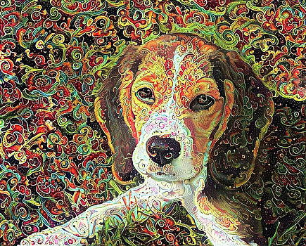 Peggy Collins - Beagle Dog Colorful Abstract Art