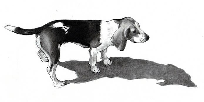 Joyce Geleynse - Beagle In Pencil
