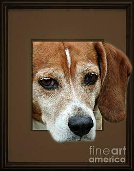 Beagle Peeking Out by Smilin Eyes  Treasures