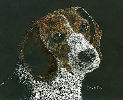 Beagle Portrait by Jessica Kale