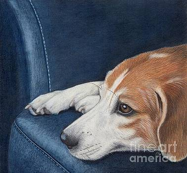 Beagle Waiting for You to Come Home by Sherry Goeben