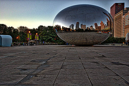 Bean at Dawn by Collette Rogers
