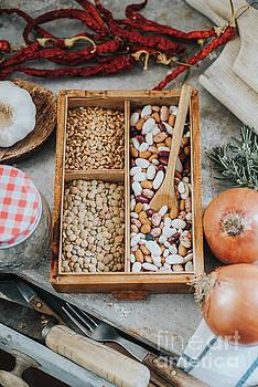 Beans, grains, vegetables and kitchen utensils   by Viktor Pravdica
