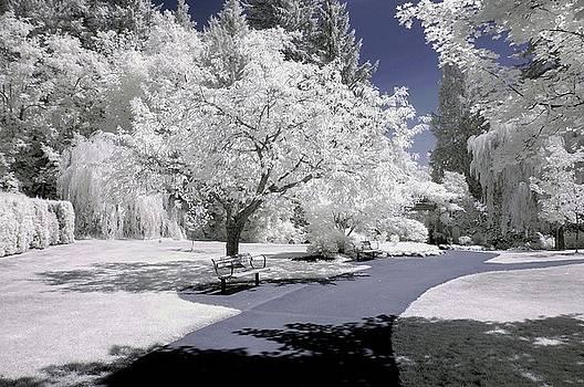 Bill Kellett - Bear Creek Park Bench