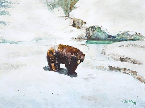 Bear  by Erik Schutzman