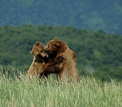 Patricia Twardzik - Bear Fight in the Meadow