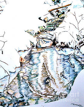 Bear Image of Snow Creek by Tracy Rose Moyers