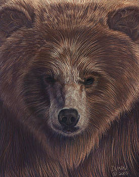 Bear by Jason Dunn
