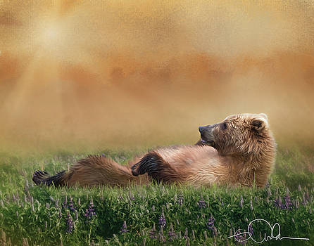 Bear laying in the grass by Gloria Anderson