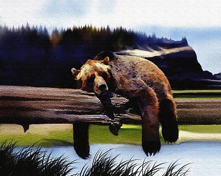 Bear Nap by Robert Foster