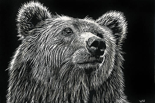 Bear by William Underwood