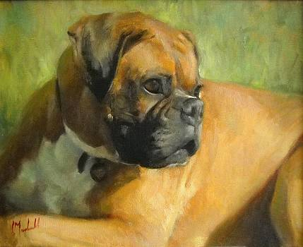 Beau by Chuck Marshall