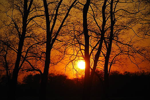 Beauatiful Red Sunset by Wanda Jesfield
