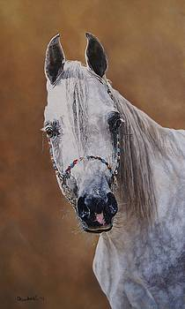 Beautiful Arabian by Erna Goudbeek