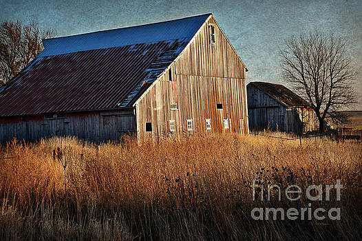 Beautiful Barn In Autumn  by Kathy M Krause