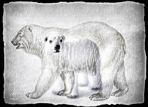 Beautiful Bears by Pennie McCracken