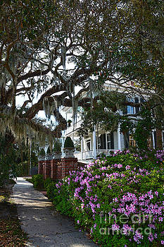 Beautiful Beaufort Scene by Catherine Sherman