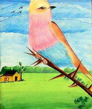 Beautiful Bird by Archit Singh