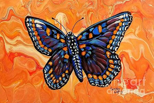 Beautiful Black Butterfly by Sandra Lett