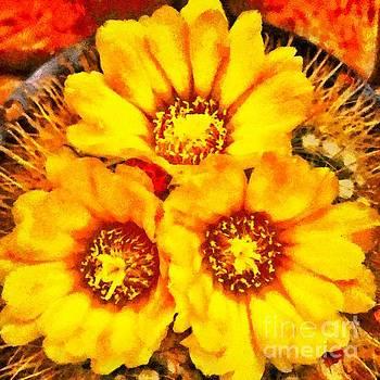 Beautiful bright yellow flowers by Ashish Agarwal
