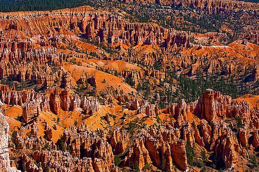 James BO Insogna - Beautiful Bryce Canyon