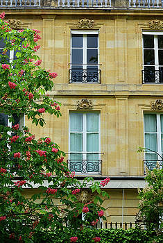 Beautiful Building in Bordeaux by Kathy Yates