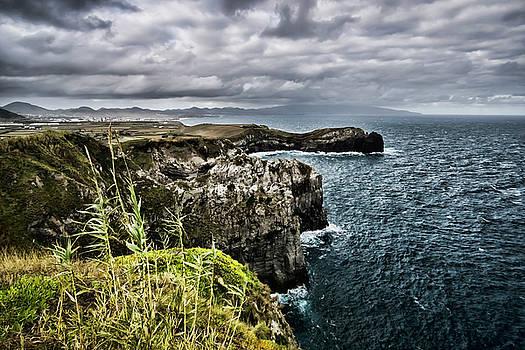 Beautiful but rugged Azorean coast  by Sven Brogren