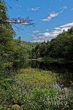 Paul Mashburn - Beautiful Clear Creek