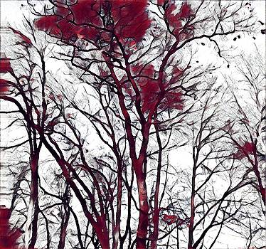Brenda Plyer - Beautiful Day 5 Crimson and Black