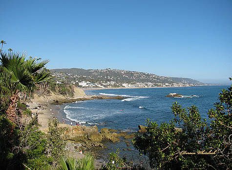 Beautiful Day at Laguna Beach by Doreen Whitelock