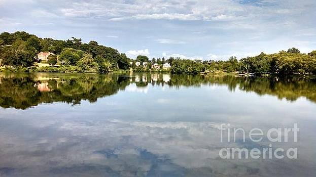 Allen Nice-Webb - Beautiful Day Reflections