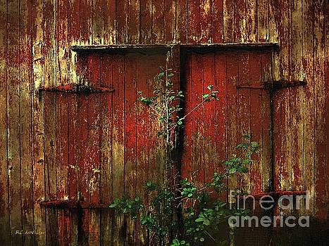 Beautiful Decay by RC deWinter