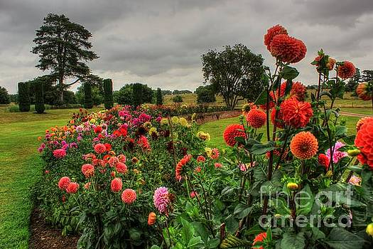 Beautiful Garden in HDR by Vicki Spindler