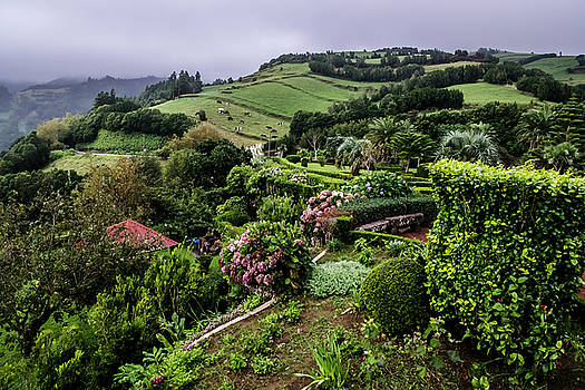 Beautiful hills in the Azores by Sven Brogren
