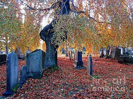 John Malone - Beautiful Historic Camp Hill Cemetery Halifax Nova Scotia