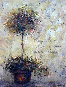 Beautiful Is the Light by Bonnie Goedecke