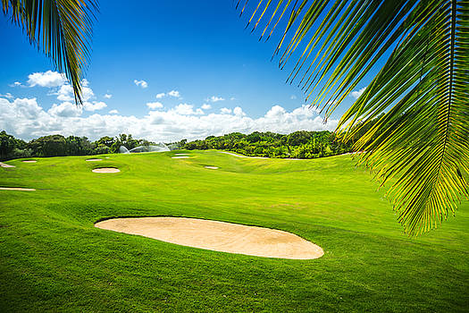 Beautiful landscape of a golf court with palm trees in Punta Can by Valentin Valkov