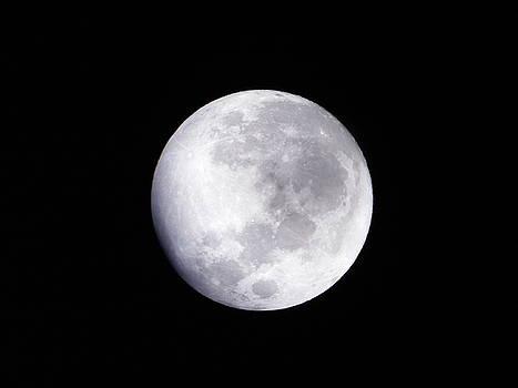 Beautiful Moon by Cindy Hudson