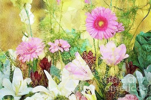 Sarah Kirk - Beautiful Nature
