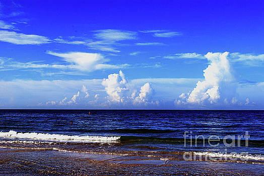 Gary Wonning - Beautiful Ocean View