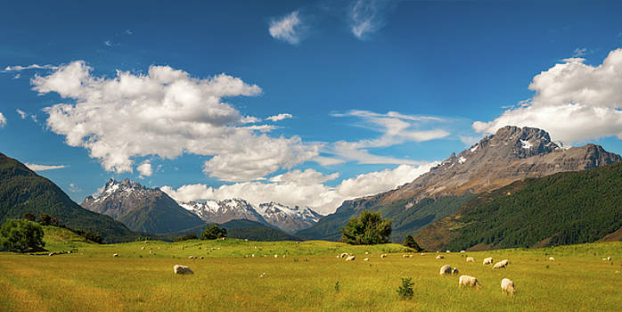 Beautiful Pastoral Alpine Landscape in New Zealand by Daniela Constantinescu