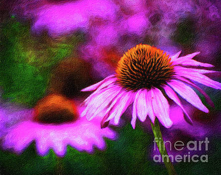 Beautiful pink daisies cornflowers painting by Amy Cicconi