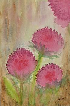 Beautiful Prickles by Lisa Gibson Art
