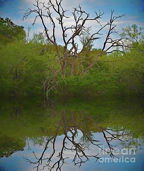 Beautiful Reflections by Ray Shrewsberry